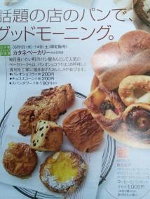 カタネさん広告2